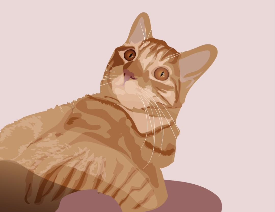 Ilustración de mascota / pet illustration